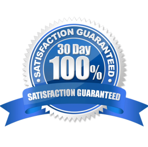 WP-Soar-Premium-WordPress-Support-Satisfaction-Guaranteed