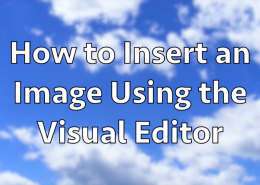 How to Insert an Image Using the Visual Editor in WordPress
