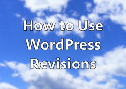 How to Use WordPress Revisions