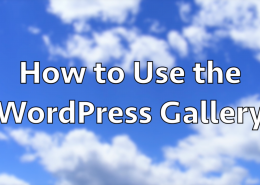 How to Use the WordPress Gallery