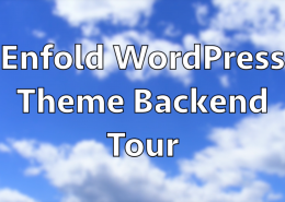 The Best WordPress Theme Enfold Backend Tour