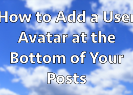 How_to_Add_a_User_Avatar_at_the_Bottom_of_Your_Posts